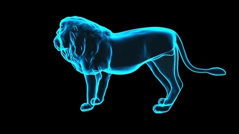 lion-hologram-4399941_1280