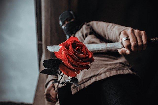 rose-4844509_640