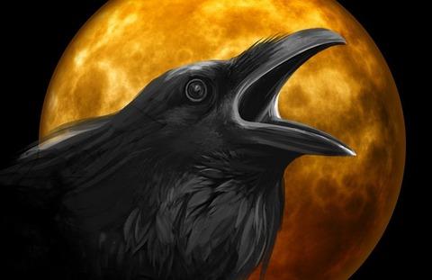 raven-995208__480