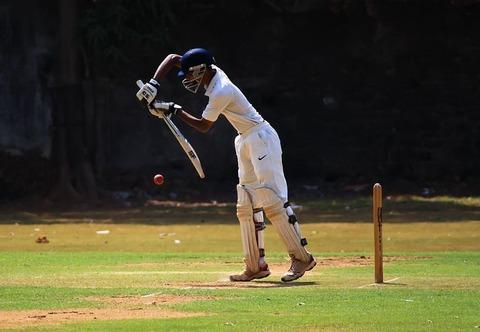 cricket-166904__480