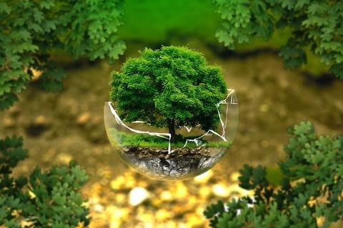 environmental-protection-326923__480