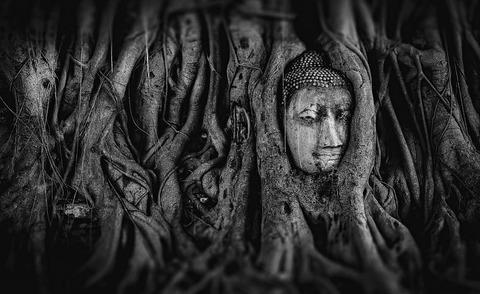 buddha-2937911__480
