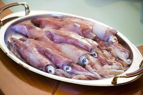 calamari-2942624_1280
