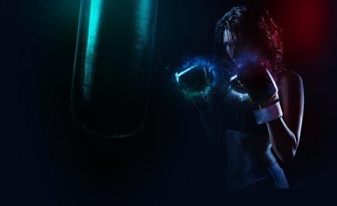 boxer-1984344__480