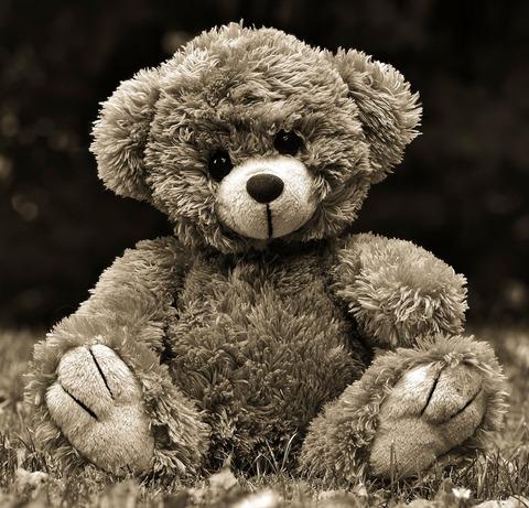 teddy-4294015_1280