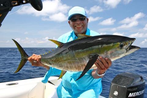fishing-1469753__480