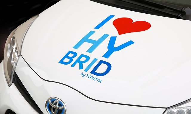 hybrid-428183_640