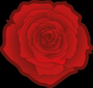 308px-Red_rose_02.svg