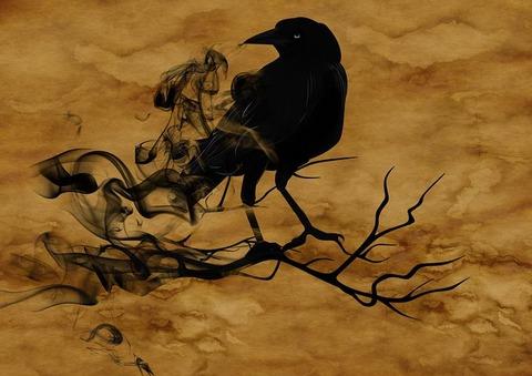 raven-1002849__480