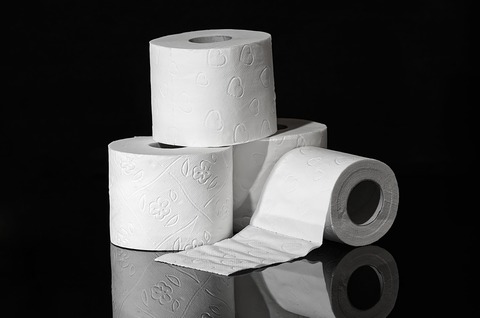 toilet-paper-3964492_1280