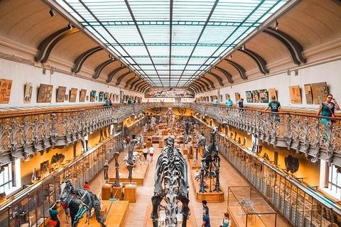 museum-5082786_640