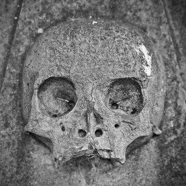 skull-and-crossbones-2762029_640
