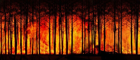 forest-fire-3836834__480