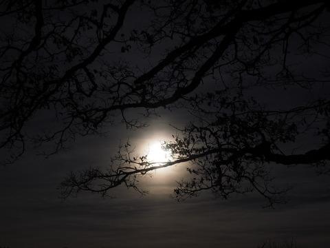 moon-1024914_1280