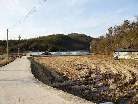 rural-141108_1920