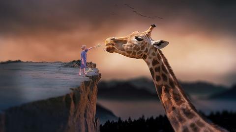 giraffe-1959110__480