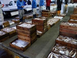 宇和島魚市場
