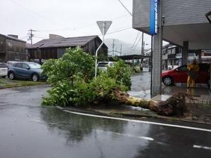 平成29年7月4日台風3号2