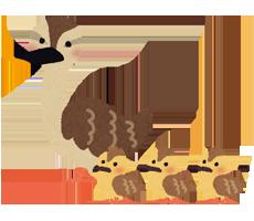 animal_karugamo_oyako