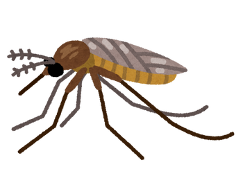 bug_akaieka