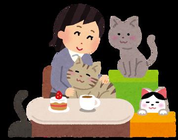後藤真希が愛猫とじゃれ合う姿にファン歓喜