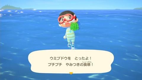 『あつまれ どうぶつの森』ダイビングをさらに楽しむ小ネタ10選!