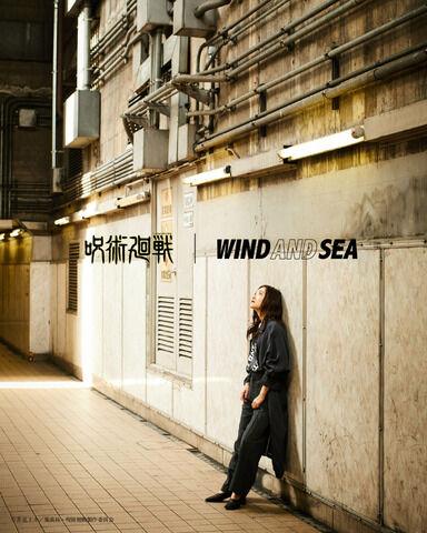 「呪術廻戦」ストリートブランド・WIND AND SEAとコラボ Tシャツやロングスリーブシャツが発売決定