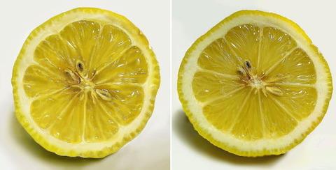 2つのレモン、どちらが絵でどちらが写真でしょうか