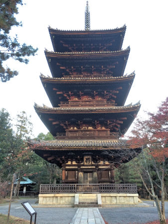 2014-11-28 ninaji.jpg