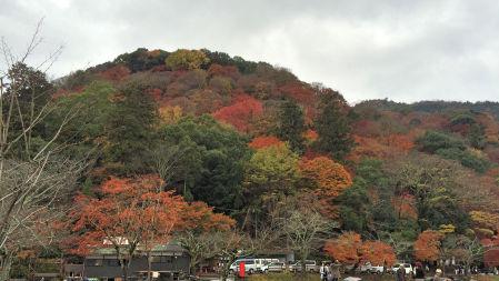 2014-11-29 togetukyou.jpg
