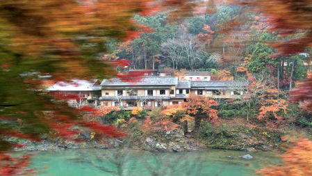 2014-11-29 hoshino.jpg
