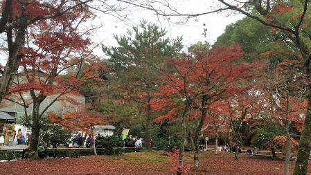 2014-11-28 kinkakuji2.jpg