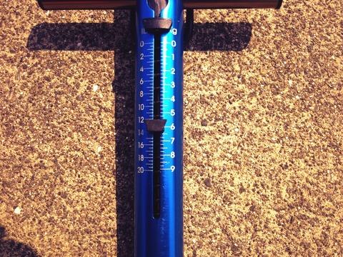 雷魚の重さは12ポンド超!
