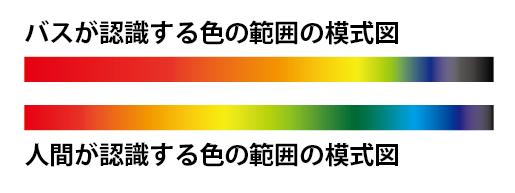 バスが見る色の世界 ワームカラーの選び方