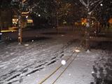 アキバに雪