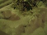5センチ以上の降雪