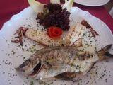 魚グリル2