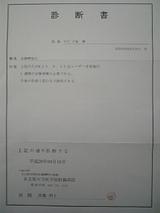 b762a93e.jpg
