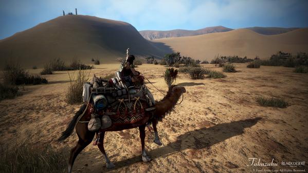 黒い砂漠 ツバキ ラクダ