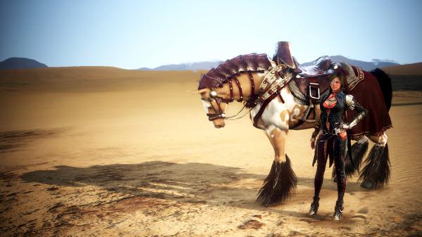 黒い砂漠1422_800投稿用660