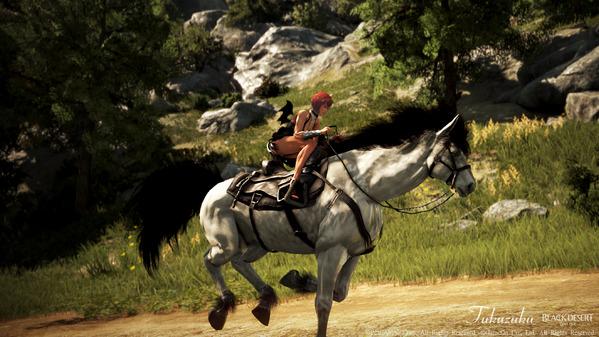 黒い砂漠 ヴァルキリー 8世代馬