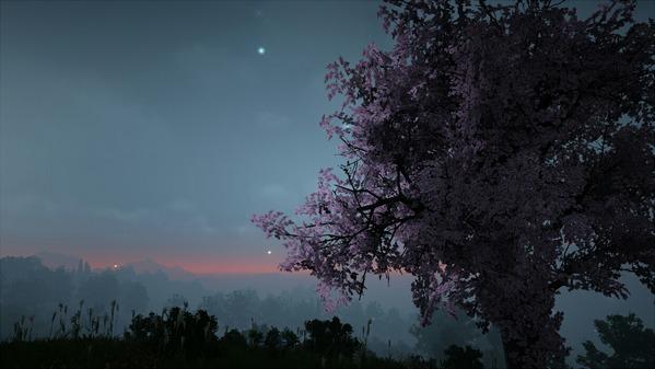 黒い砂漠 桜