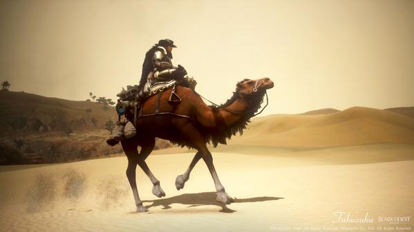 黒い砂漠 ウォーリア コルネリアアーマー