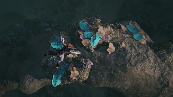 黒い砂漠 あの深い海に 珊瑚とり フォーチュンクッキー02