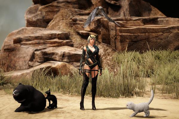 黒い砂漠 ペット