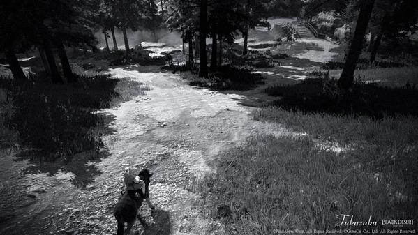 黒い砂漠 風景SS