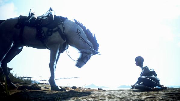 黒い砂漠 馬 ヴァルキリー
