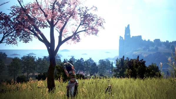 黒い砂漠 フレームの丘 桜