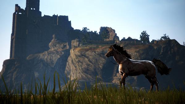 黒い砂漠 クロン城 馬