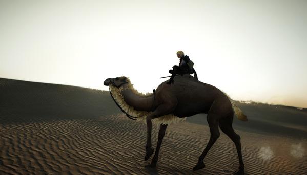 黒い砂漠 ラクダ ヴァルキリー